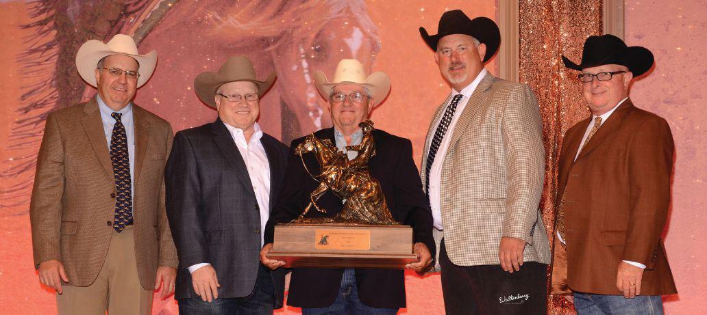 Silva-Reining-Horses-award